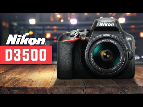 Nikon D3500 DSLR Review: An Entry-Level Camera That's Not