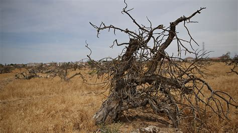 Drought is not just about water