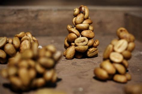 The Most Expensive Coffee in The World is Made From Animal