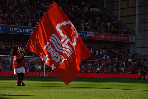 The Scout Report: Nottingham Forest - Can Sunderland play