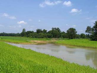 Roanoke River Wetlands Game Lands - Whitley Tract